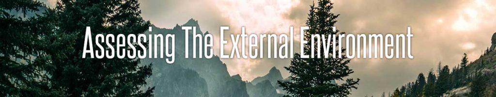 Assessing The External Environment